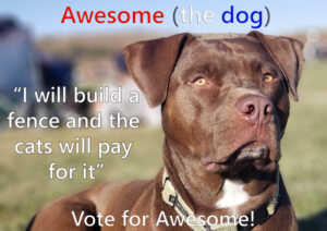 Awesome the dog for Mayor