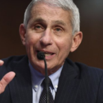 Dr. Fauci: says US 'going in wrong direction' in coronavirus outbreak