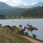 Evergreen Colorado is a Great Place to Live